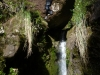 Piha Halfday canyon 30