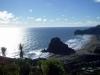 Piha Beach 13